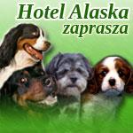 hotel-alaska-button